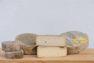 Govs piena siers pusciets